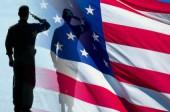 Sparklers for Veterans Day image