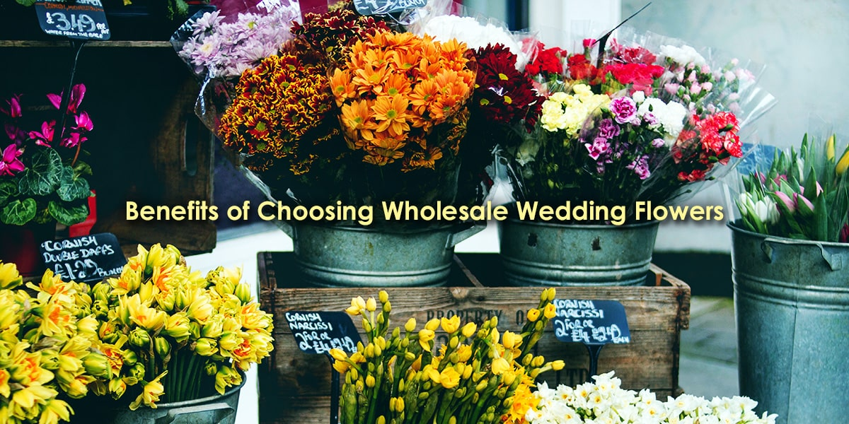 Benefits of Choosing Wholesale Wedding Flowers image